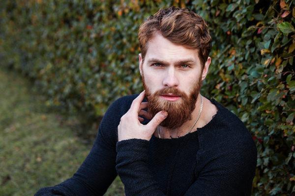 quanti peli contiene barba