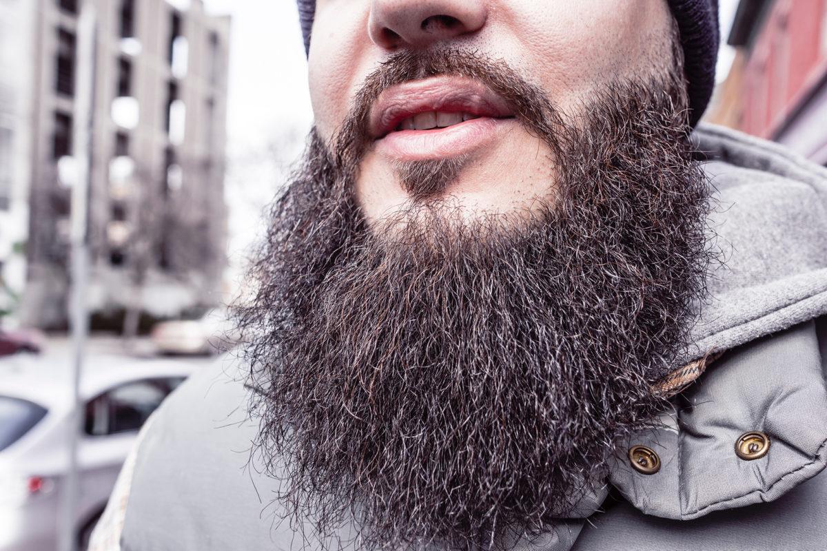 barba folta
